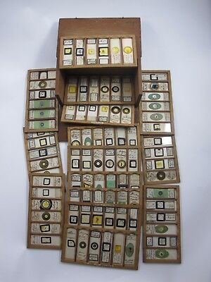 Cased collection of 90 Antique Microscope Slides. Dated 1882/1883.