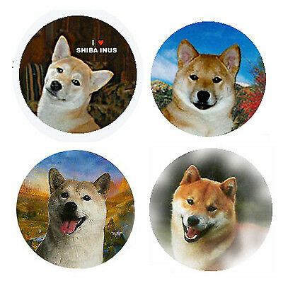 Shiba Inu Magnets:4 Cool Shiba Inus for your Fridge or Collection-A Great Gift