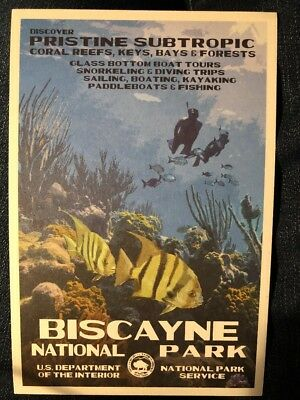 Biscayne National Park WPA Style Art Postcard New