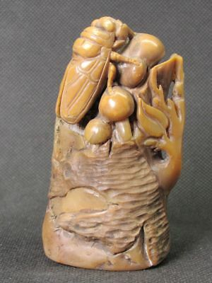 Chinese Cicada On Tree Carved Shoushan Stone Seal Stamp Signet