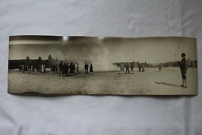 """1900s VINTAGE YELLOWSTONE NATIONAL PARK GEYSER REAL PANORAMIC PHOTO 11 3/4"""""""