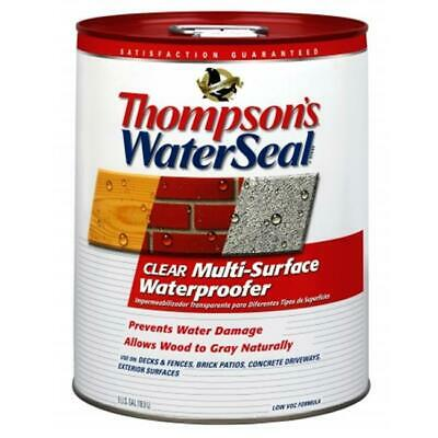 Thompsons 5 Gallon Clear WaterSeal Multi-Surface Waterproofer  24105