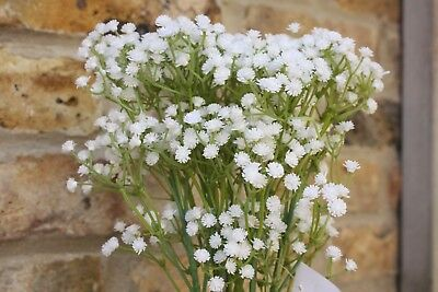6 x ARTIFICIAL WHITE GYPSOPHILA SPRAYS LONG  WIRED STEMS 50cm