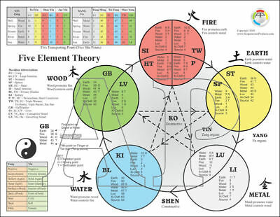 Five Elements of Acupuncture Points Chart 8.5 X 11