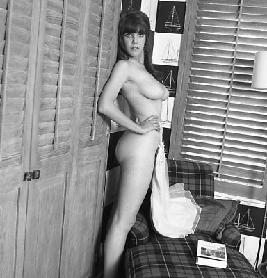 1960s Vogel Negative, busty nude brunette pin-up girl Kyleene Smythe, t213623