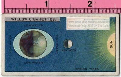 Spring Tides On Earth Moon Sun Gravitation c90 Y/O Trade Ad Card