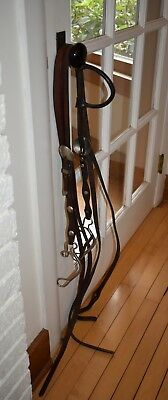 GORGEOUS CIRCLE Y Western REAL Silver Show Headstall One Ear Bridle BIG  Buckles