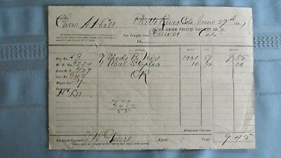 1887 Platte River Station Colo Union Pacific Railway Freight-Bob Wire-South Park