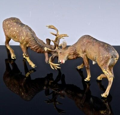 VERY FINE QUALTY 19thC VICTORIAN AUSTRIAN COLD PAINTED BRONZE FIGHTING STAG DEER