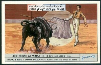 Bull  Vision Eyes What Cattle Cow  See c40 Y/O Trade Ad Card