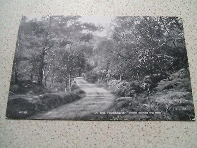 Postcard - In The Trossachs 'Where Twines The Path' - Scotland - Stirling