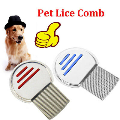 Pet Lice Nit Comb Get Down To Nitty Gritty Stainless Steel Metal Head And Teeth