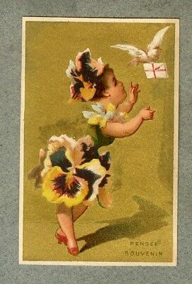 Chromo Epicerie Toulouse Fille fleur Flower girl pensée Pansy colombe trade card