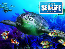 2 Sea Life Tickets You will receive weblink code to book Full entry FREE TICKETS