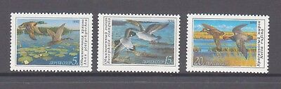 Russia 1990 Ducks mint unhinged set 3 stamps.