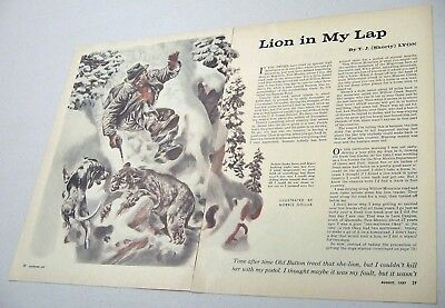 1957 Magazine Picture Man,Mountain Lion,Dog Illustrated by Morris Gollub