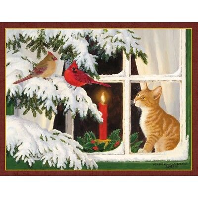 Kitten Christmas  5.375 In X 6.875 In Assorted Boxed C, Christmas Cards by Lang