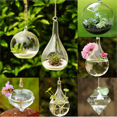 Glass Hanging Ball Vase Flower Plant Pot Terrarium Container Party Wedding Decor