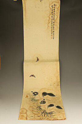 Old Exquisite Hand painted Artistic Play Cat Butterfly Scrolls Picture wall deco