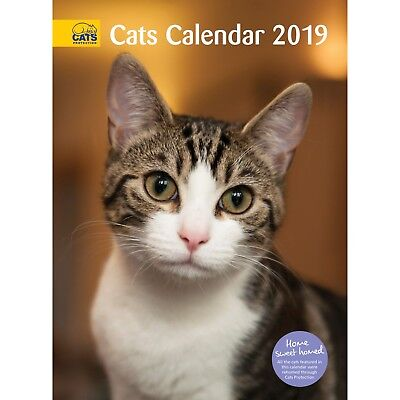 **NOW REDUCED!!** Cats Protection - 2019 Cat Calendar **Was £5 now £1.50**