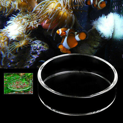 Glass Aquarium Fish Tank Shrimp Food Dish Bowl Feeder Round Clear Tray Container