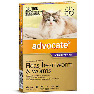 Advocate Cat Flea and Worm Treatment Over 4kg Purple 1's (A2314)