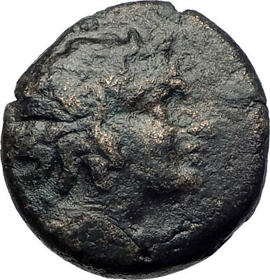 PELLA Macedonia 158BC Authentic Genuine Ancient Greek Coin PAN  ATHENA  i73373