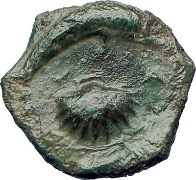 Syracuse Sicily 357BC QUALITY  Ancient Greek Coin FEMALE & DOLPHIN  i73374