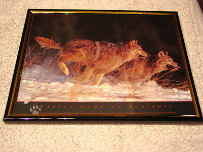 Wolves ( Wolf ) 8X10 Framed Picture #4