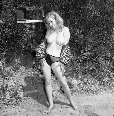 1960s Ron Vogel Negative, busty nude blonde pin-up girl Marie Chandler, t915543