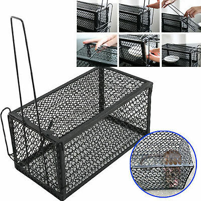Mini Rat Catcher Spring Cage Trap Humane Large Live Animal Rodent Indoor Outdoor
