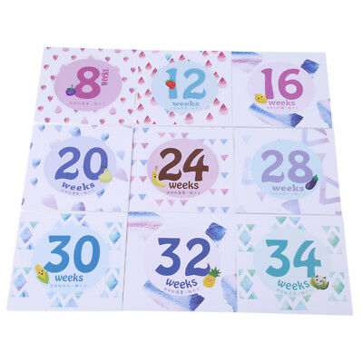 14Pcs Studio Photo Props Baby Pregnant Women Monthly Photograph Stickers OE