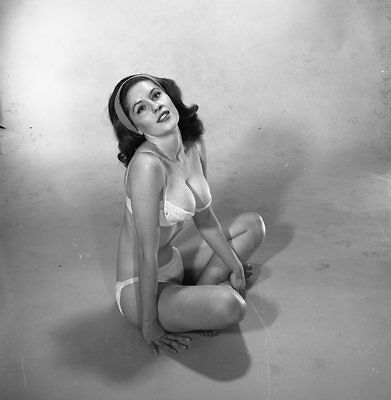 1960s Vogel Negative, busty pin-up girl Judy Treadway in sexy lingerie, t216570