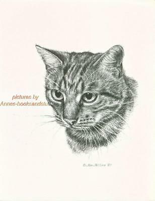 #259 TABBY CAT portrait cat art print * Pen and ink drawing by Jan Jellins