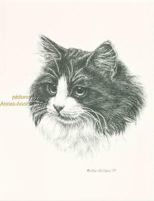 #223 LONG HAIR Black & White  CAT art print * Pen and ink drawing by Jan Jellins