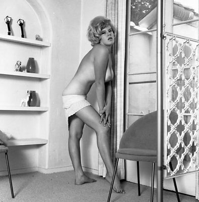 1960s Ron Vogel Negative, busty nude blonde pin-up girl Sue Dover, t213233