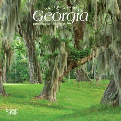 2019 Georgia Mini Wall Calendar, More U.S. States by BrownTrout