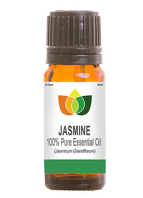Jasmine Absolute Essential Oil Pure Natural Authentic Aromatherapy