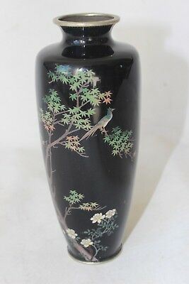 Japanese cloisonne Meiji period signed marked 19th c century antique bird decor