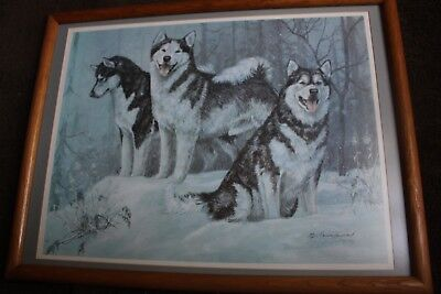 Original Framed And Autographed #202/400  With 3 Wolfs  By Marcia Vanwoert 1985
