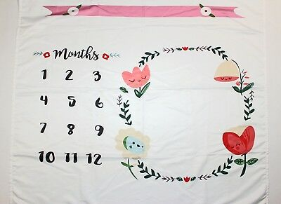 Newborn to 1 Year Old Monthly Milestone Baby Blanket (1-12 Months), MINT!!