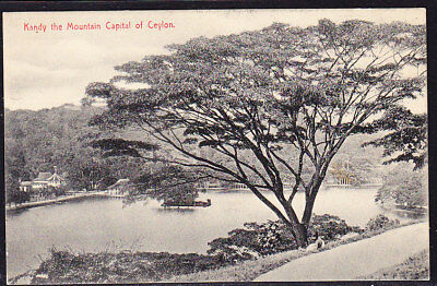 Ceylon Postcard Kandy Mountain Capital #288