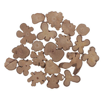 20PCS Small Irregular Natural Tree Wood Slices for Wedding Home Decorations
