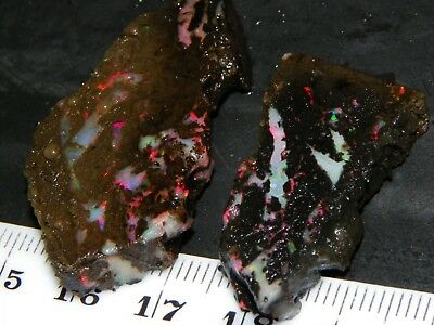 2 Sliced Opals/Rough 54cts Indonesia Black/Crystal Material Red/Pink Fires NR