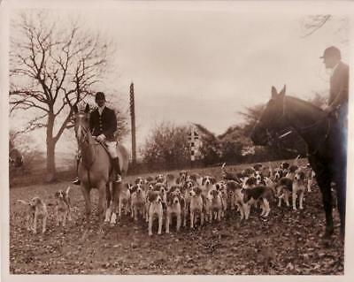 Seven Spring Hunting Horse & Hounds Cotswold Chasse à courre vintage Photo 1934