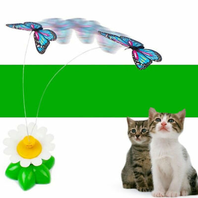 Electric Funny Pet Cat Kitten Toys Rotating Butterfly Rod Cat Play Spielzeug DE