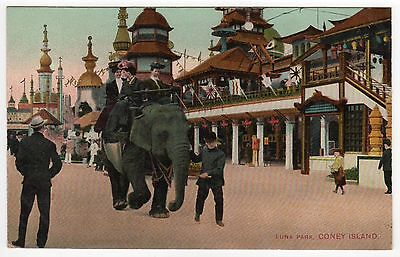 CONEY ISLAND PC Postcard NEW YORK CITY Amusement Park LUNA PARK Elephant Ride