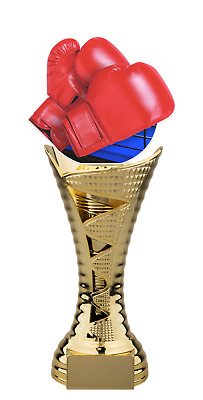 BOXING RED GLOVES ACRYLIC TROPHY CUP GOLD OR SILVER *FREE ENGRAVING* 340mm