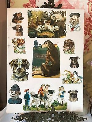 Victorian Scraps Scrapbook Page Pictures Ephemera on Large Card Vintage Dogs
