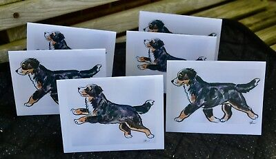 Bernese Mountain Dog.Post cards made from my original watercolors.Set of 6.LOOK!